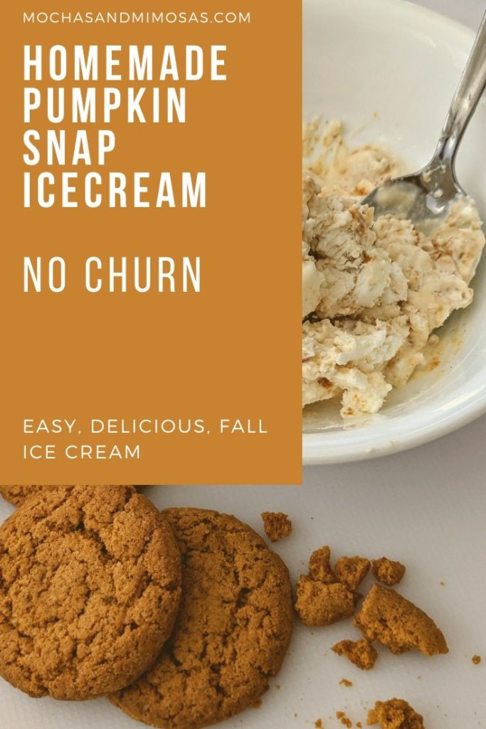 easy, homemade, pumpkin snap cookie, no churn ice cream recipe