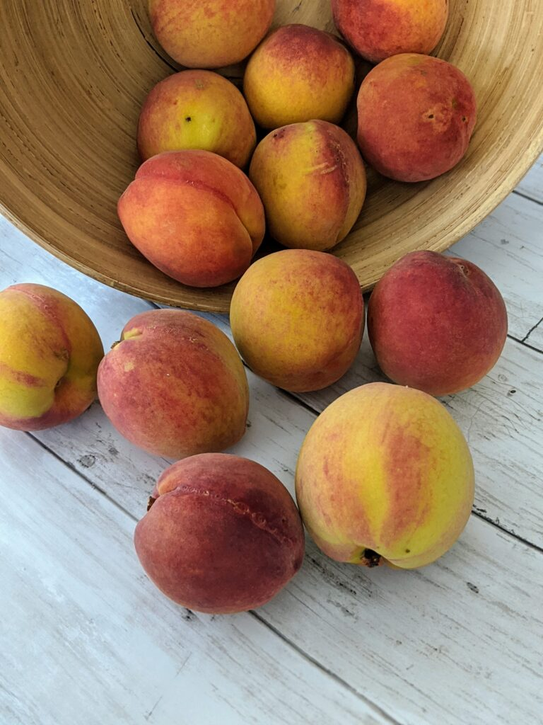 peach-picking-with-the-family