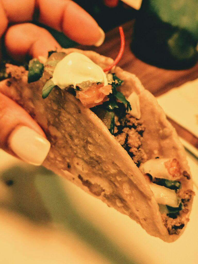 elk tacos at Haywire